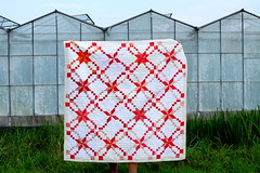 Swirling Stars quilt in front of glass houses (Lotje quilts) Tags: dogoodstitches comfortcircle redandwhitequilt lamoynestar irishchainlamoynestar quilt beequilt dutch landscape