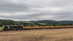 3235_2016_07_16_Haunetal_Neukirchen_MRCE_DISPO_6193_877_mir_S21_Aushubzug_Fulda (ruhrpott.sprinter) Tags: ruhrpott sprinter deutschland germany nrw ruhrgebiet gelsenkirchen lokomotive locomotives eisenbahn railroad zug train rail reisezug passenger gter cargo freight fret diesel ellok hessen haunetal boxxboxxpress db egp ell hhla hsl hvle lbllocon metrans mrcedispolokdispo bb railpoolrpool rbh rhc schweerbau sbbc txltxlogistik wienerlokalbahnencargo 143 145 152 182 185 193 218 270 428 650 1264 1266 421 es64u2 es64f4 greencargo ice r5 outdoor logo natur sonnenaufgang graffiti rinder