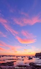 Atardecer en La Caleta (Roferfrann) Tags: caleta cdiz playa beach sunset atardecer landscape panoramica pano panoramic sunrise atlanticocean ocean espaa andaluca spain water agua barcos boats sun sol castillo faro lighthouse castle