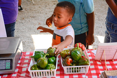 Resourceful_Communities_Sandhills_Heritage_Family_Association_2016_NC_(c)_Olivia_Jackson_20 (Resourceful Communities) Tags: children class dentistry discussion education farm food fresh fruit groups learning local market northcarolina organic outdoors produce programs sandhills springlake summer volunteers youth