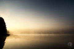 The cutoff (PeterGrayPhoto) Tags: landscape morning sunrise water fog mist lake warmia polska poland