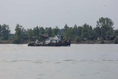 NKRS5586 (pristan25maj) Tags: green pristan pristan25maj brodovi boats reka river dunav danube photonemanjaknezevic nkrs