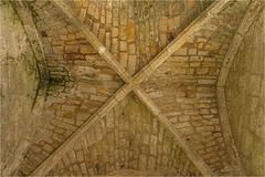 Bayham Abbey 5 (mini-b) Tags: bayhamabbey ruins englishheritage 13th15thcentury frant eastsussex canon eos5dmkii ef28300mm3556lisusm 2016