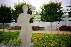 PLW_5549 (Laszlo Perger) Tags: wien vienna österreich austria blumengarten hirschstetten flowergarden