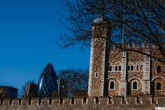 Tower of London - The Gherkin - London - England (TLMELO) Tags: inglaterra bridge england sky panorama london clock westminster rio thames towerbridge river jubilee bigben bluesky nelson games palace queen buckinghampalace greenpark londres years olympics anos riverthames gherkin elisabeth 60 30stmaryaxe toweroflondon jogos westminsterbridge reinounido palaceofwestminster lordnelson olimpics rainha london2012 swissrebuilding unitedkingdon riotmisa olmpicos tmisa jubileu mygearandme