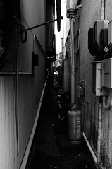 _DSF4072_1 (oncoinco0920) Tags: road street bw japan photography photo tokushima x100