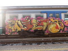 nothing changes (en-ri) Tags: train writing torino graffiti rosa sdk militare albedo wufc