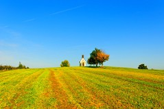Auf dem Haldenberg (Michaela-W) Tags: autumn sky orange green germany landscape herbst wiese chapel gras grn braun landschaft kapelle friedrichshafen himme oberschwaben ailingen nikond300s streamzoo