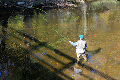 Fly Fishing: Pennypack Creek (JKEL) Tags: philadelphia fishing flyfishing pennypack northeastphiladelphia pennypackpark pennypackcreek