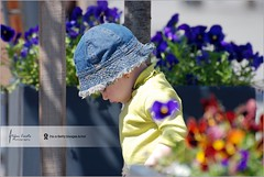 Among flowers | Entre fleurs (Stefan Cioata) Tags: street family flowers light people baby flower cute girl beautiful hat childhood outdoors person photography one photo nikon shadows dof child image sweet bokeh sale exploring great stock best stefan explore jeans getty top10 available outstanding earing caucasian fleures d80 cioata