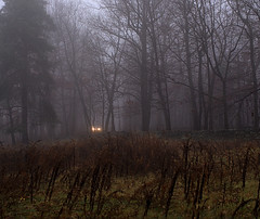 Arrival (photodyne) Tags: trees car fog massachusetts headlights lincoln canond30 codmanfarm