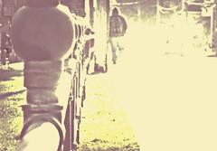 Making One's Way Through the Maelstrom (Paul B0udreau) Tags: ontario canada blur fence dof bokeh samsung niagara master picnik grimsby hypothetical hff vividimagination sharingart samsungmaster fujifilmfinepixs1500 fencefriday paulboudreauphotography