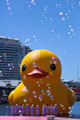 Giant Rubber Duck (akwan.architect) Tags: artist harbour sydney australia duch yellowrubberduck florentjinhofman
