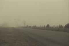 Headlights (backghost) Tags: road film field fog analog fence grey dusk farm overcast pentaxk1000 headlight paddock