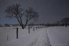 Waterman Farm (andiwolfe) Tags: columbus ohio snow ohiostateuniversity watermanfarm