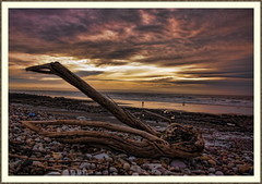 The Driftwood Perspective (Through the eyes of a Valley's Boy) Tags: wales pentax driftwood coastal porthcawl tonemapped