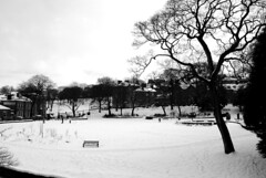 Pavilion Gardens from the Pavilion (zawtowers) Tags: park winter england white snow tree gardens bench buxton view district derbyshire january peak pavilion solitary slopes unoccupied