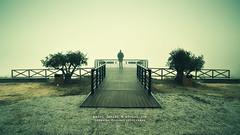 Viewpoint (Pedro Daniel MPFD) Tags: man fog lomo nikon gazebo miradouro olivetree tamron1735 fozca d700 hitechfilters