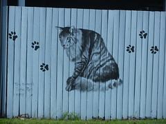Artwork on the Vet's Fence 29/365 (Glenda 8) Tags: art cat fence painting paleblue