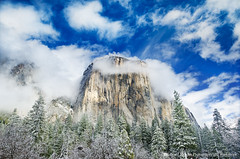 Emergence, Yosemite NP (Edward Mendes) Tags: california morning travel trees winter sky snow west art nature horizontal clouds america landscape photography photo nationalpark fineart scenic adventure yosemite granite elcapitan mariposa pinetrees yosemitevalley freshsnow snowcoveredtrees easternsierra yosemitevillage elportal clearingstorm breakingstorm