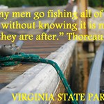 VSP_Fishing quote thumbnail