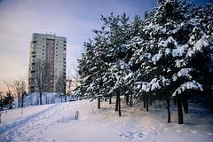Litauen Länderkürzel