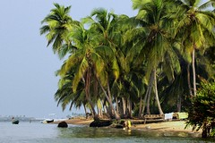 Island In Volta River near Ada (paulinuk99999 (back in Ghana)) Tags: africa water river ada palm estuary ghana volta cocnut paulinuk99999 sal70400g