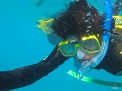 W-IMG_2586 (baroudeuses_voyage) Tags: ocean sea coral oz australia diving snorkeling cairns reef greatbarrierreef cay eastcoast australie atoll gbr michaelmascay oceanspirit grandebarrieredecorail