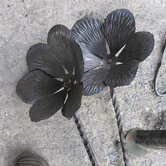 Blacksmithing - Sculptural Flowers (ArtisOn Masham) Tags: blacksmithing metalsculpture adrianwood