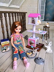 """""""I love cats"""" :"""") (cute-little-dolls) Tags: licca cats cattower catfood foxtail gacha dollhouse doll toy kawaii fish miniature"""