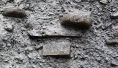 Sanidina em Traquitos (correia.nuno1) Tags: deutschland geologia geology kln sanidinkristallen trachyt trachytvomdrachenfels traquito sanidina
