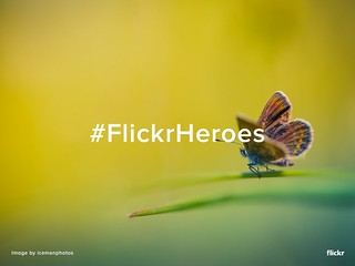 #FlickrHeroes