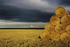Storm (I Love Canon <3) Tags: outdoor fields canon eos 50d 35mm14l sunset storm pola wielkopolska wymysowo poland polska travel trip corn grain