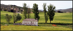 Bienvenue en Andalousie -  Welcome to Andalusia (diaph76) Tags: espagne spain andalousie andalusia campagne campaign extrieur paysage landscape arbres trees maison house champs fields verdure greenery vgtation fleurs flowers coquelicots poppies