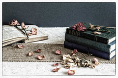 237/366: Books 'n' Roses (judi may) Tags: 366the2016edition 3662016 day237366 24aug16 stilllife tabletopphotography books roses deadroses driedroses petals lace hessian textures oldbooks canon7d dof depthoffield