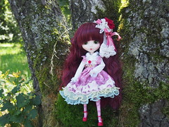 More pics from Rose & Fox (sh0pi) Tags: pullip fashion doll puppe groove little prince petit prinz kleine fox the rose 2016 outside p160 jan januar jnner january