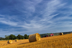 Round Baling Straw (Alan10eden) Tags: harvest stubble straw swaths bale round tractor baler baling golden field cut bluesky farm farmer agriculture grower crop rotation gilford northernireland ulster canon 80d sigma 1770mm polarizer alanhopps view landscape