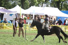 The 8th Texas Cavalry as part of the US Civil War Reenactment Society at the Shakerstone Festival 2016 (MarkHaggan) Tags: shakerstone shakerstonefestival festival 2016 04sep16 04sep2016 fete 8thtexas cavalry horse mounted soldier uscivilwar reenactment confederate