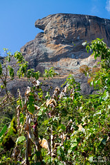 IMG_M7952 (Max Hendel) Tags: climbing bastone pedradobasbentodosapucaspbrazil complexopedradoba sbentodosapuca montanhismo escalada alpinismo maxhendelphotography bymaxhendel