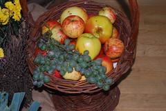 Das ist ein reicher Segen (amras_de) Tags: apfel pfel malus jablon bleslgten pomarbo unapuu omenapuut pommier obelis sierappel apelslktet iekelmasi weintraube weinbeere traube uga grode ram rva vinstok grape vinbero uva viinamari mahats viiniryple raisin szolo vnber vynuoge vinogas druif drue druer rasim winorosl grappugghia vinic grozdje druva zm