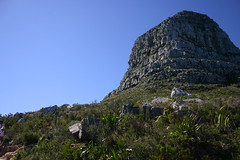 IMG_9856 (Couchabenteurer) Tags: lionshead capetown southafrica sdafrika kapstadt