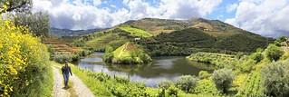Hiking along Rio Tedo where Port Wine is produced