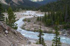 DSC_6265 (AmitShah) Tags: banff canada nationalpark