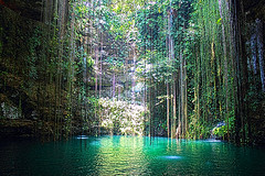 Ik-Kil (ElizabethWilsonPhotography) Tags: nature water wonder landscape mexico hole sink natural maya mayan cenote ikkil