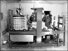 Apple Cider Press at Snow Line (greenthumb_38) Tags: blackandwhite bw apple blackwhite orchard duotone snowline applecider oakglen jeffreybass canong11