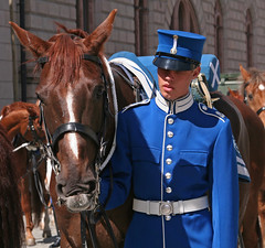 A Soldier and Horse (April.Moulton) Tags: travel horses horse man tourism canon soldier uniform europe sweden stockholm candid military guard royal streetphotography palace canon350d royalpalace changingoftheguard nationalgeographic candidphotography travelphotography reigns