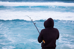 Fishing, Australia (Robert Lang Photography) Tags: ocean fish man color colour tourism beach nature water animal sport fun nationalpark fishing sand native sandy tail stock salt salmon australia coastal destination recreation sa southaustralia beachfishing ep animalia oneperson bigfish saltwater fishtail lincolnnationalpark bigsalmon chordata eyrepeninsula actinopterygii infauna perciformes australiansalmon salmonidae manholdingfish arripistrutta arripis arripidae aussiesalmon
