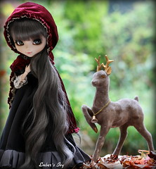 Beware wolves (pure_embers) Tags: uk autumn red green leaves sisters forest ana eyes doll dolls gray royal ivy deer riding wig cape hood pullip pure wolves karina embers prancing leeke obitsu leekeworld prupate