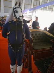 Flutter Treat at Venus Berlin 2012 (leinir) Tags: venus pony 2012 ponyplay venus2012