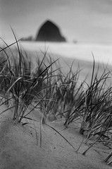 from grass and sand (after october) Tags: ocean blackandwhite film beach oregon 35mm coast sand pacific tmax shore pentaxk1000 pacificnorthwest cannonbeach seastack